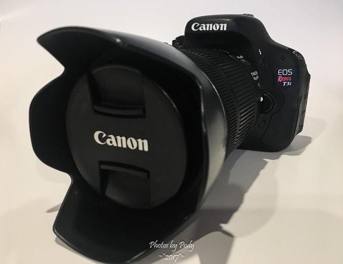 Canon T3i_20170123_002