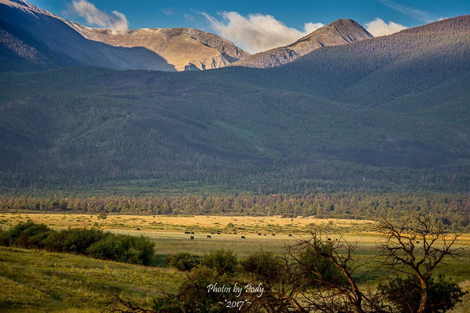 Sangre de Cristo Mountains_20160825_025