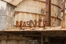 Waco Magnolia Trip_20170311_087