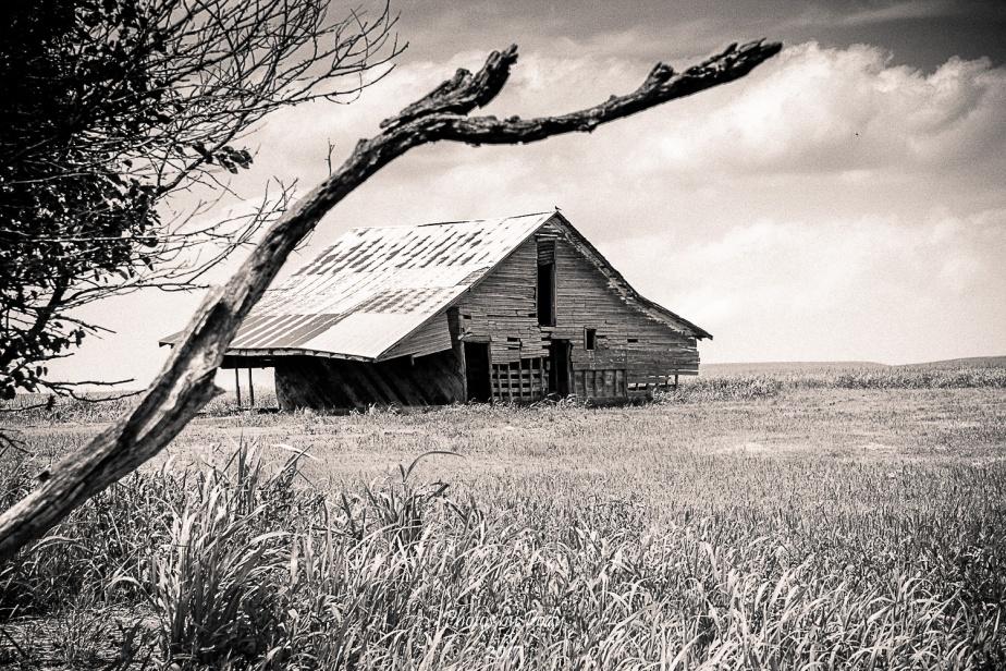 Drummond Ranch_20170527_004