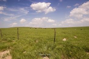 Drummond Ranch_20170527_009