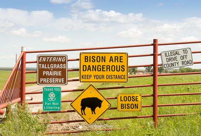 Tallgrass Prairie_20170528_001