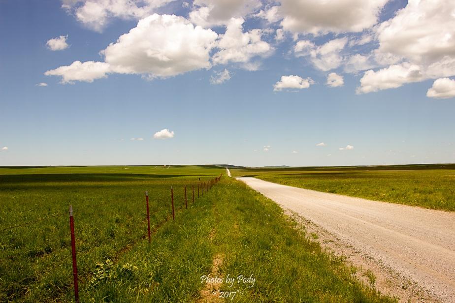 Tallgrass Prairie_20170528_092