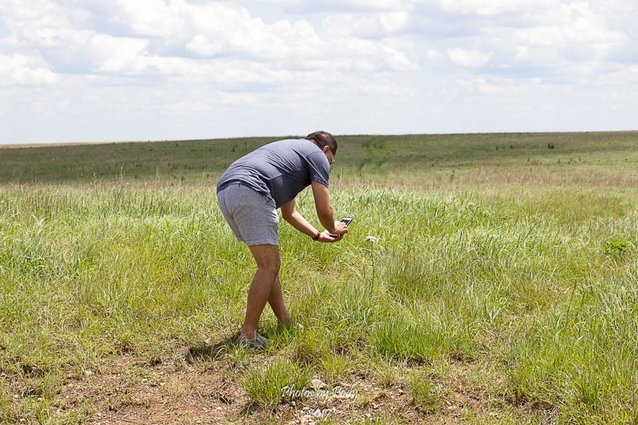 Tallgrass Prairie_20170528_095