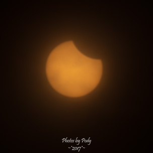 Solar Eclipse 2017_20170821_054