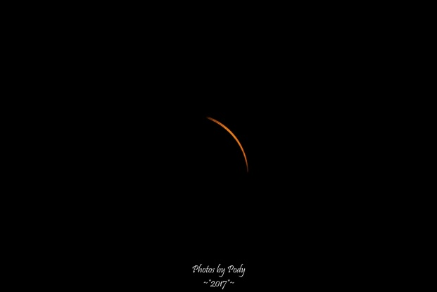 Solar Eclipse 2017_20170821_319