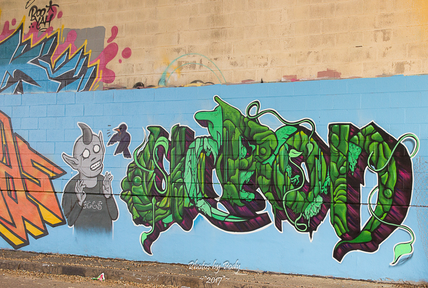 Graffiti Dallas_20171124_023