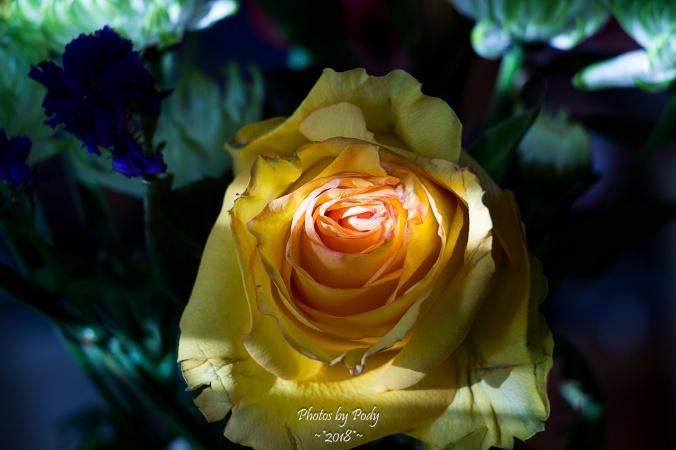 Juanita's Birthday Flowers_20180108_010