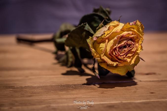 Juanita's Birthday Flowers_20180118_065