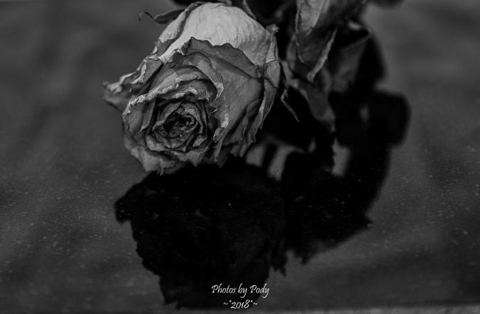 Juanitas Birthday Flowers_20180122_005
