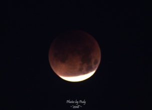 Super Blue Blood Moon_20180131_115