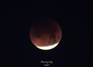 Super Blue Blood Moon_20180131_115