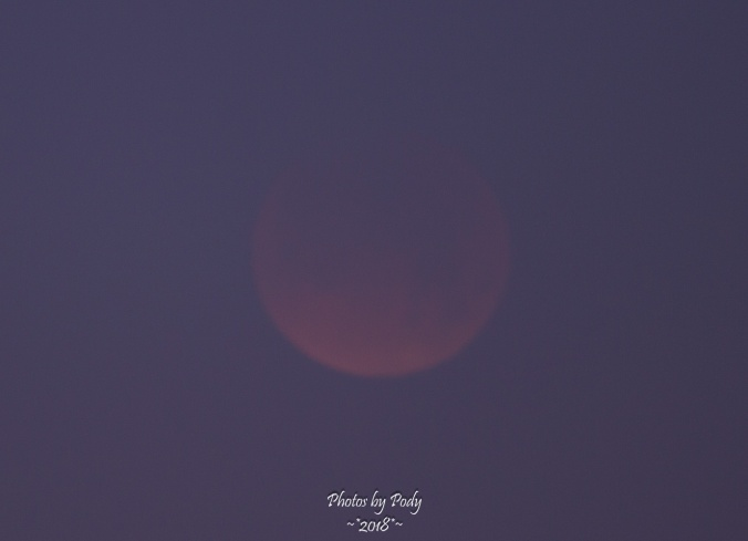 Super Blue Blood Moon_20180131_156