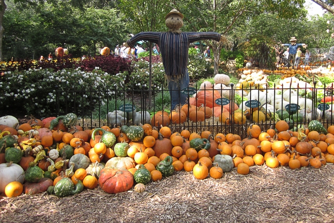 Arboretum2_20140927_021